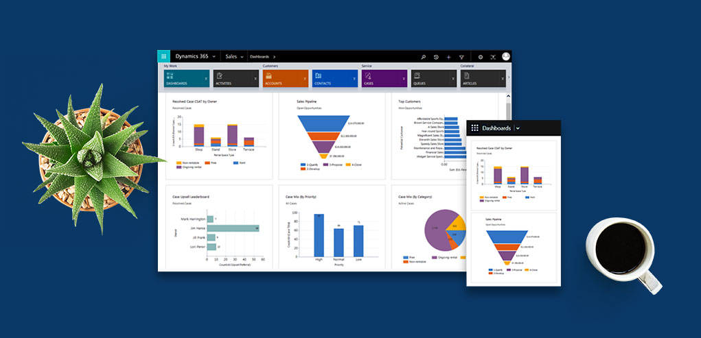 Dynamics 365 Section Image