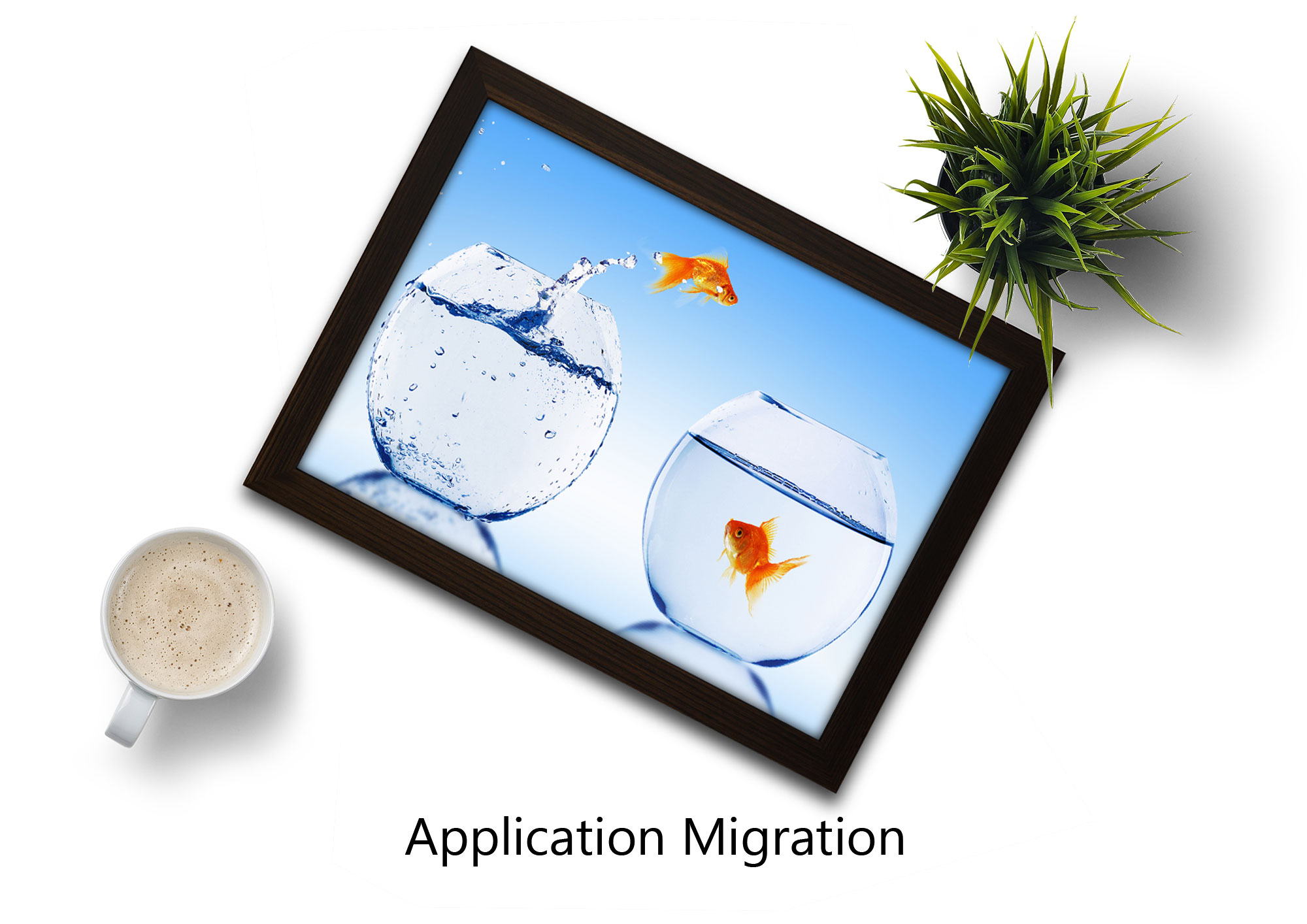 Java Consulting - Application Migration