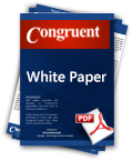 Software Application Development White Paper